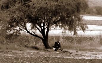 vida en el campo, Fotos juan López Luna y ADP. Fotos antiguas de Irapuato (4)