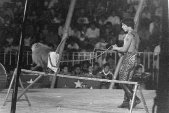 circo irapuato (24)