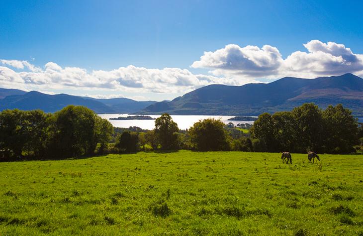 travel to ireland, muckross