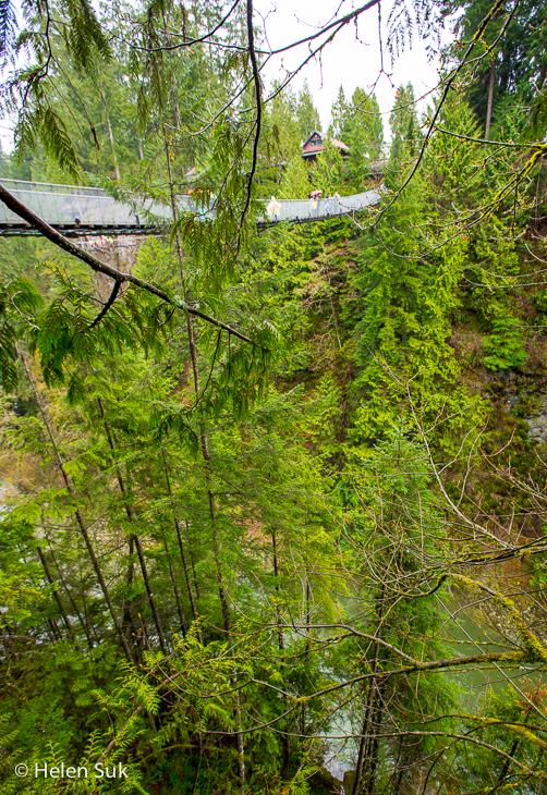 view of the suspension bridge at capilano suspension bridge park vancouver bc