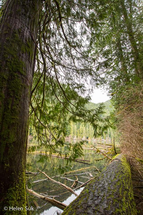 cameron lake, british columbia