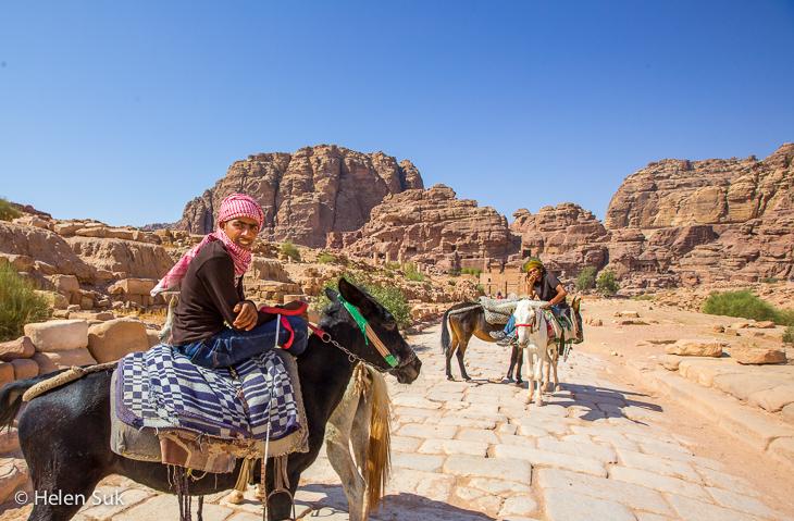 bedouins petra, donkeys