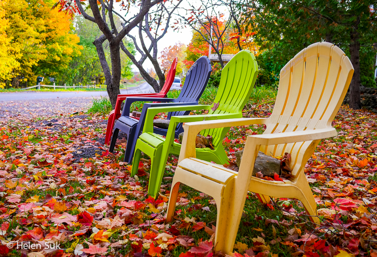 autumn in prince edward county