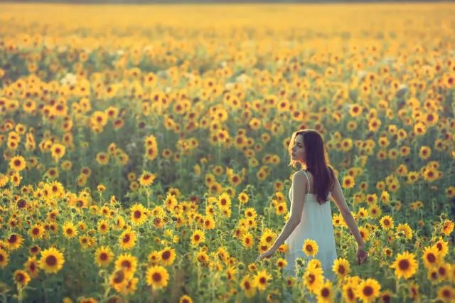 woman in field of sunflowers