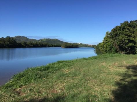 La rivière de Dumbéa