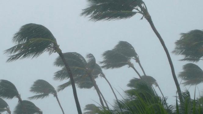 Windyty : DÉPRESSION AU NORD DU VANUATU SAMEDI