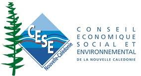 Économie et Social : encore un Comité.  A quoi donc sert le Conseil Économique, Social et Environnemental ?