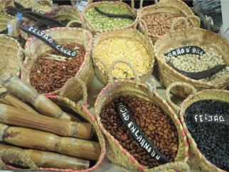 Mercado Municipal de Lagos, Fish Market