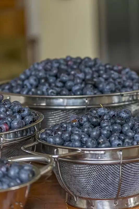 Recipe for Honey-Lavender Blueberry Syrup which can be preserved by water bath canning. Use it to make Blueberry Spritzers for holiday & summer festivities.