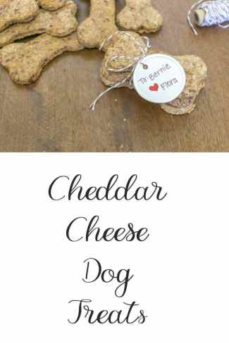 Simple recipe to make your own dog treats. Ingredients includes whole wheat, honey, eggs & cheddar cheese, sure to please even the pickiest canine friend