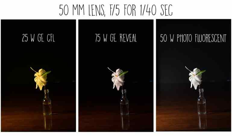 Quick tutorial on Floral Art Photography showing how to photograph against a black background with a comparison of the effects different bulbs. Great way to diy art for your home decor.