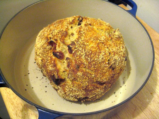 no knead cranberry walnut bread in dutch oven vegan and gluten free