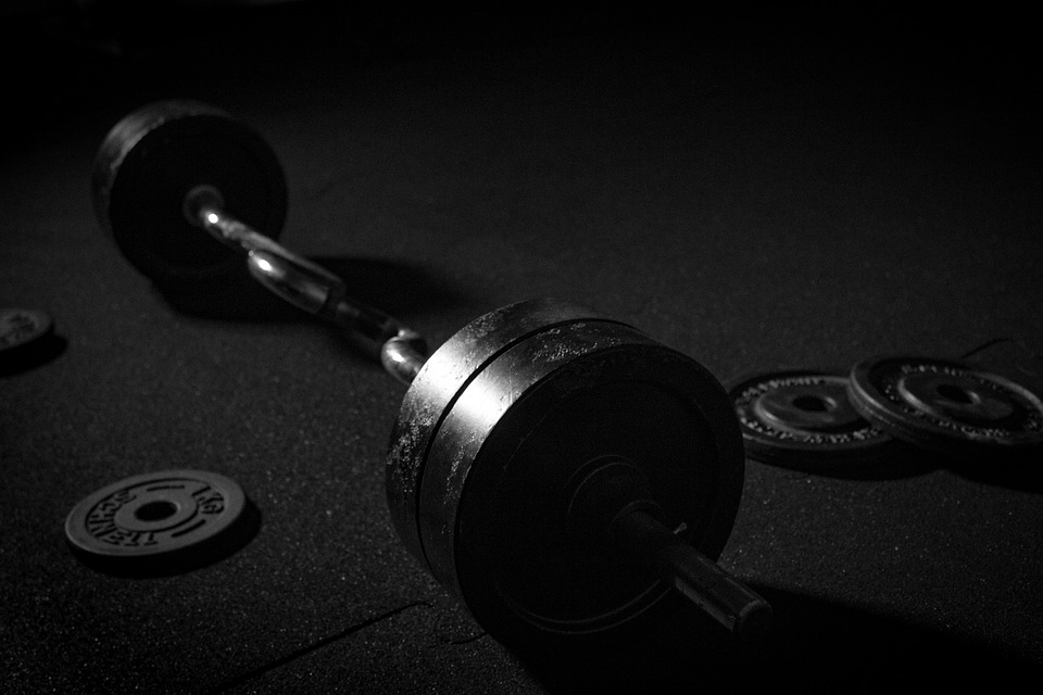 Nutrition for Building Muscle Mass