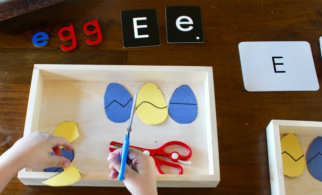 Cutting Eggs with Scissors