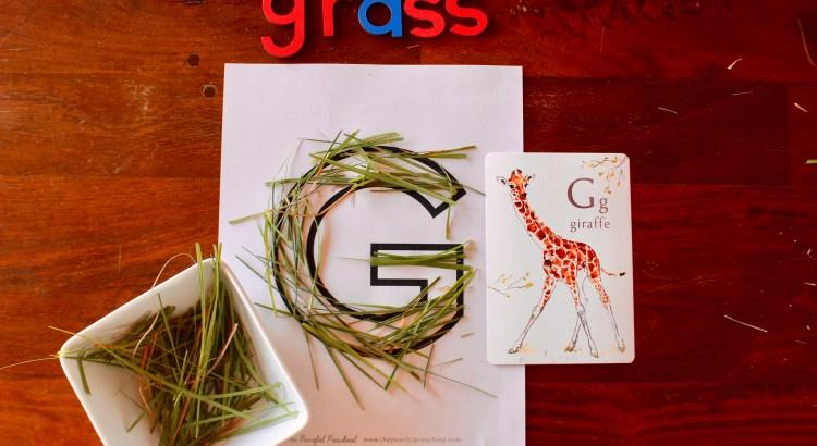 Letter G Preschool Unit