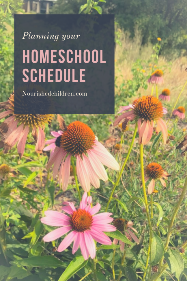 Planning Homeschool