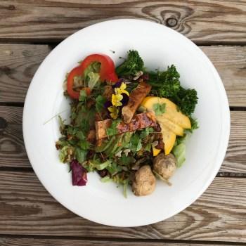 Anna Loka Cardiff - Krishan's Mighty Wholefood Bowl