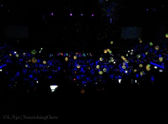IMG_20140420_173922-p365d110-lights