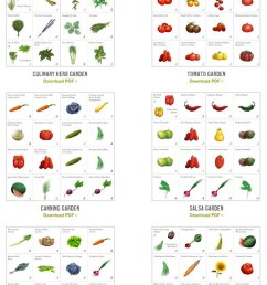 williams sonoma plant a gram for raised bed gardens [ 600 x 1588 Pixel ]