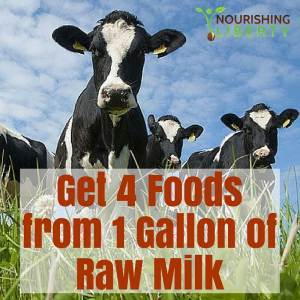 Get homemade cottage cheese in 3 simple steps from raw milk!