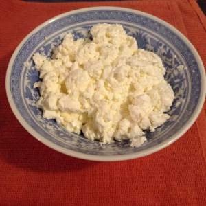 homemade cottage cheese how-to