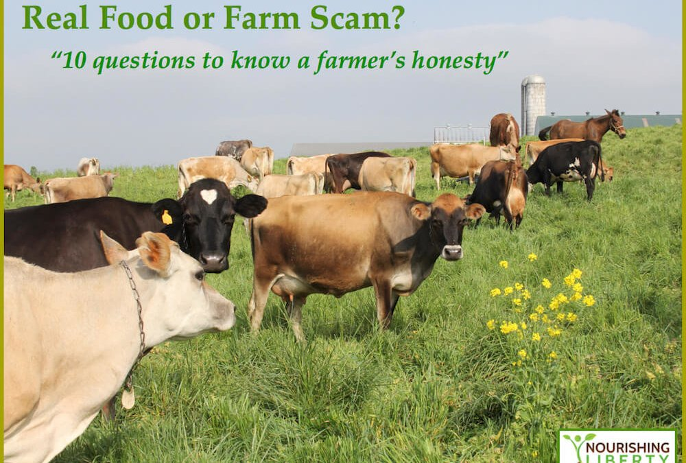 Real Food or Farm Scam?