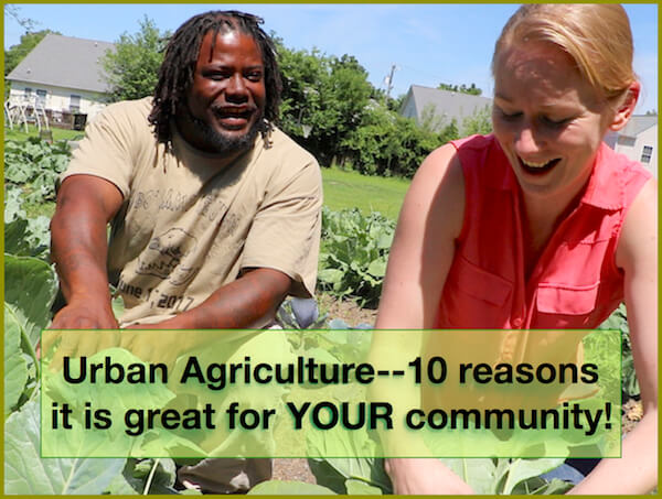 Urban Agriculture–10 reasons it is great for YOUR community