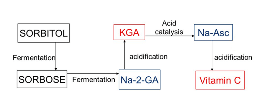 Vitamin C Supplements Manufacture Flow