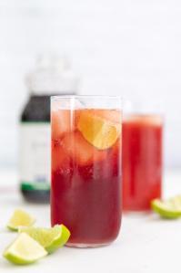 Pomegranate Lime Spritzer