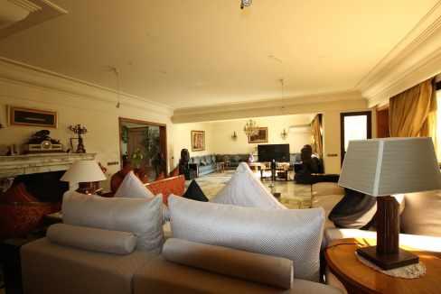 coeur-de-racine-luxueux-penthouse-avec-terrasse-266-m2_1361