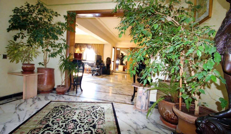 coeur-de-racine-luxueux-penthouse-avec-terrasse-266-m2_1390