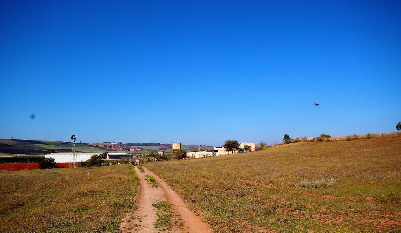 a-vendre-ferme-d-une-superficie-4-2-hectares-002