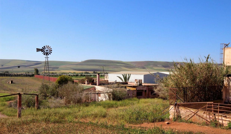 a-vendre-ferme-d-une-superficie-4-2-hectares-014