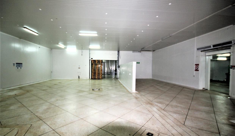 unite-industrielle-moderne-de-stockage-froid-et-de-distribution-a-vendre-location-possible-019