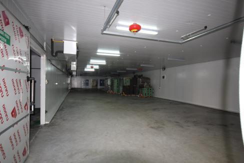 unite-industrielle-moderne-de-stockage-froid-et-de-distribution-a-vendre-location-possible-033