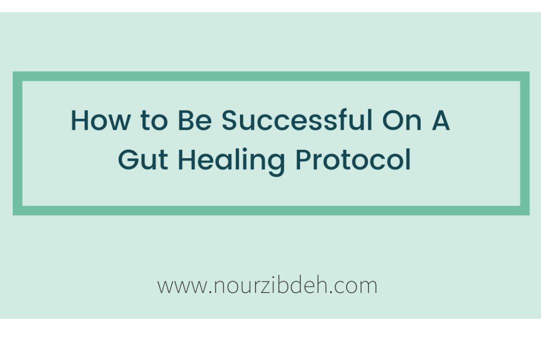 How to Truly Succeed On a Gut Healing Protocol