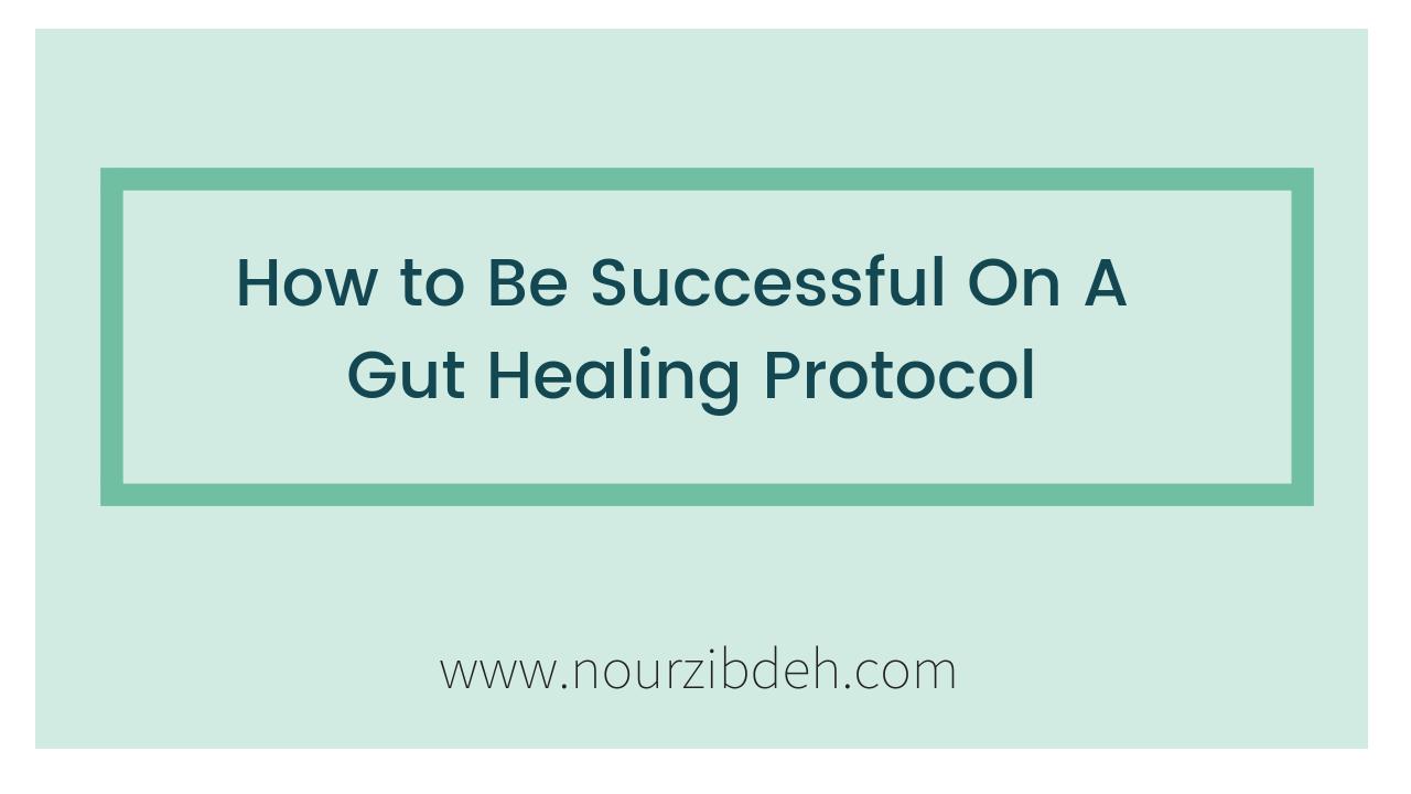 gut healing protocol
