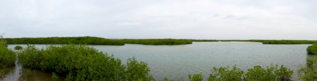 Un panorama du paysage qu'offre le sentier écologique de la Somone - Photo P.B.