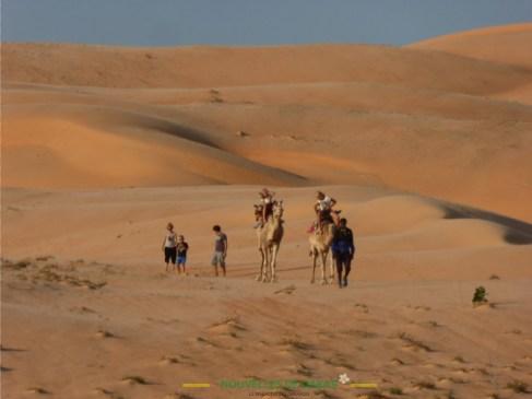 Balade en dromadaire dans les dunes