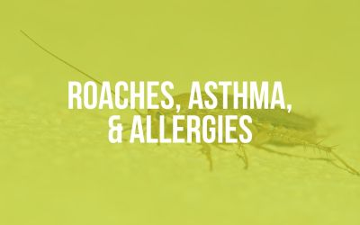 Roaches, Asthma, and Allergies