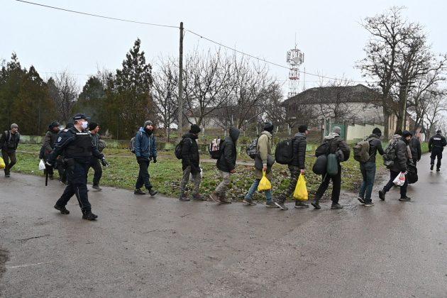 U hostelima i stanovima pronađeno 52 migranta 1