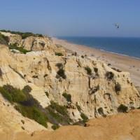 Calas y Playas con Encanto: de las Marismas del Odiel a Doñana