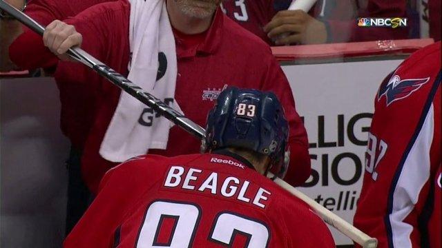 jay-beagle-stick