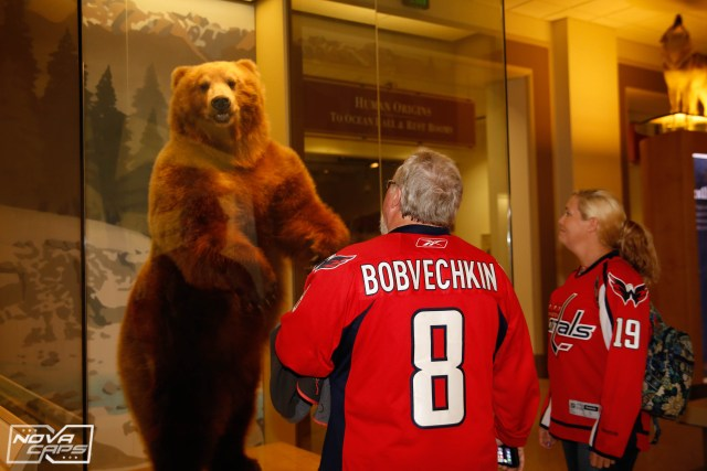 washington-capitals-fans-natural-history-museum-jpg