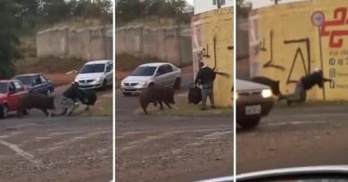 Internautas fazem vaquinha online para ajudar homem atacado por porco em Franca