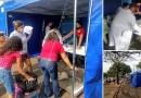 Orlândia realiza castração gratuita de 400 cães e gatos nos dias 14 e 15 de outubro