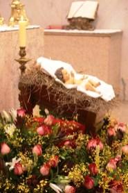 Missa do Galo na Catedral (5)