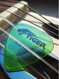 Guitar Plectrum Tiger
