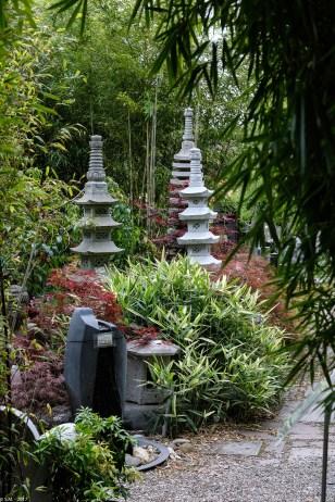 Bambus-Impressionen_170606_4_4