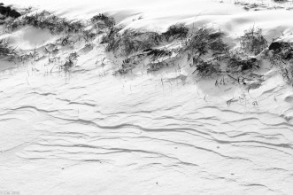 Beuster_Winter (17 von 26)